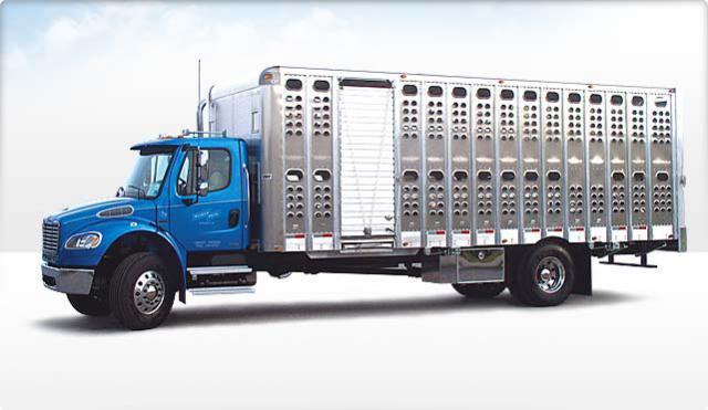 Aluminum Truck Bodies Flatbed Platform Dump Grain